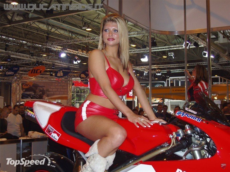 ducati-girls-3_800x0w.jpg